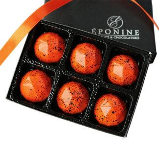 Pumpkin Pie Chocolates Box